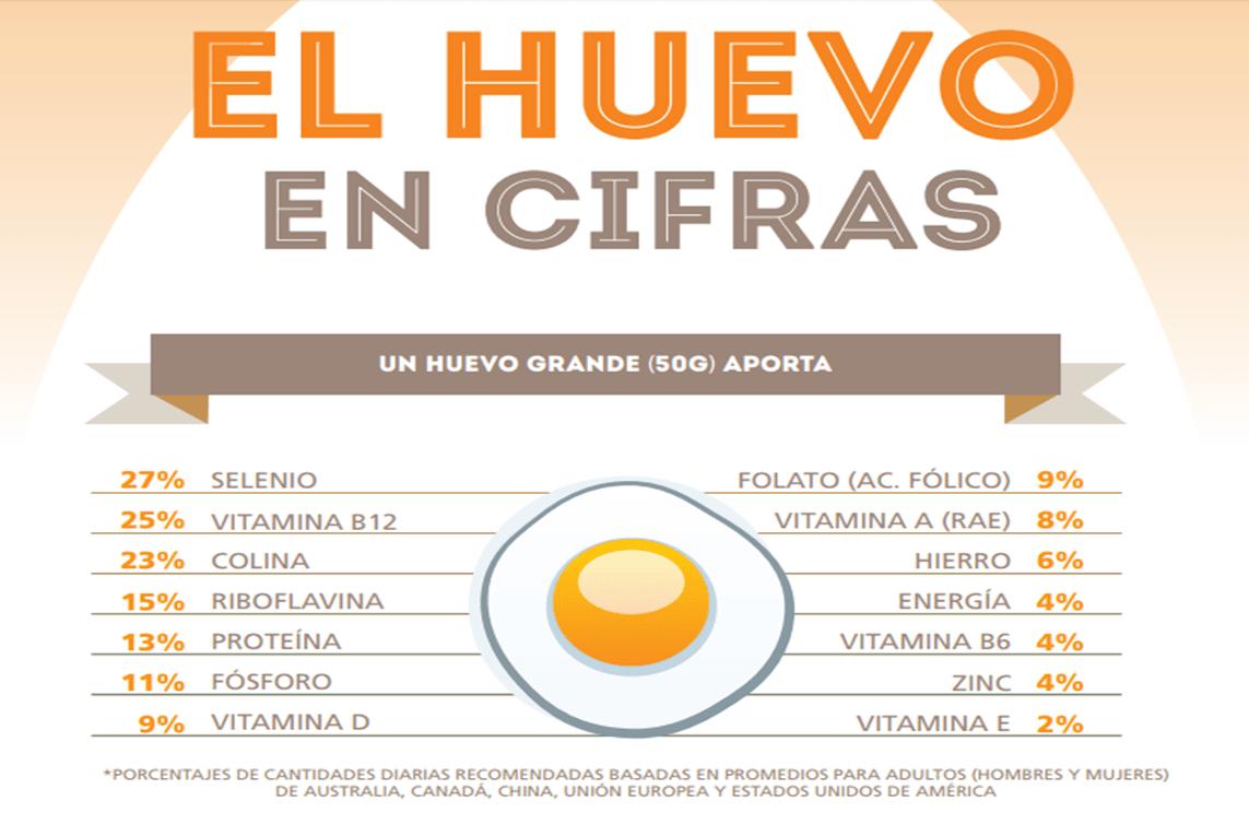El huevo en cifras infograf a guao for Huevo en el ano