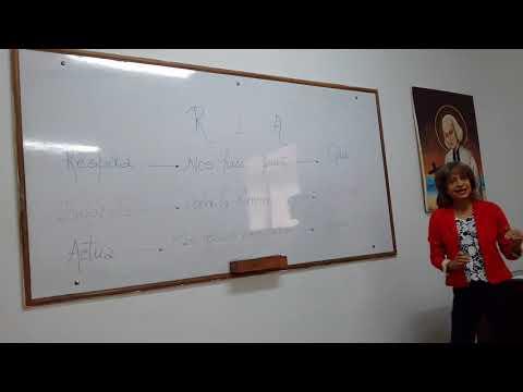 Embedded thumbnail for estrategia educativa REA